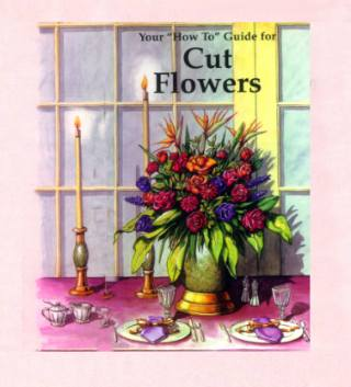 How-To Guide for Cut Flowers