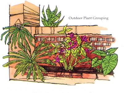 OUTDOOR PLANT GROUP