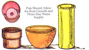 POTS AND CONTAINER